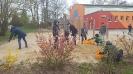 Unsere Schule wird grüner_1