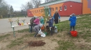 Unsere Schule wird grüner_3